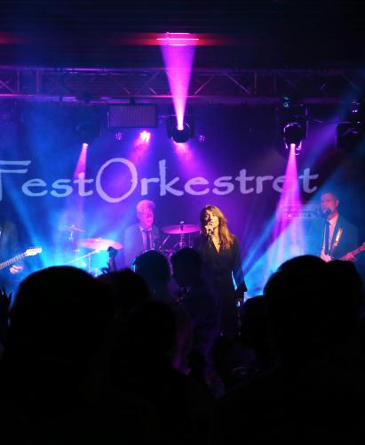 Festorkestret bookes på bandportalen.dk