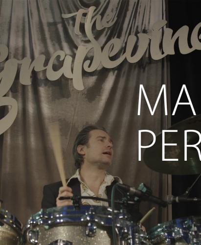 The Grapevines - Martin Persson - bookes på bandportalen.dk